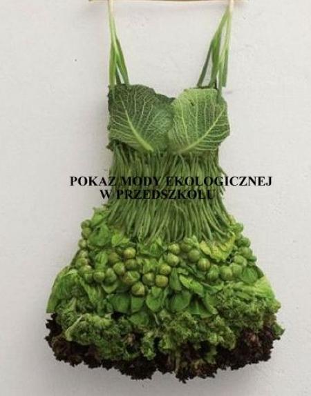 Pokaz mody ekologicznej w przedszkolu